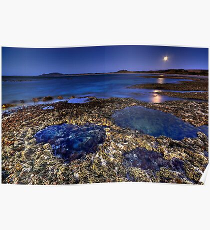 Rockpools & Moonlight Poster