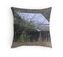 Ronnie's Shed.  Throw Pillow