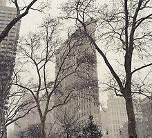 Flatiron Building by CDinaPhoto