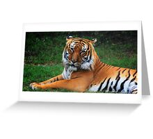Majestic Tiger Greeting Card