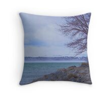 end of another winter Throw Pillow