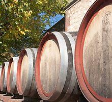 Yalumba Wine Barrels by Scott Sheridan