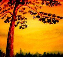 Pine by John Moore