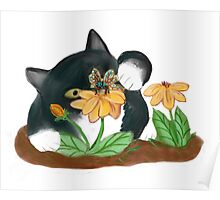 Butterfly on Yellow Flowers Temps Kitty Poster