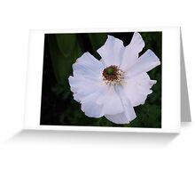 Delicacy: Greeting Card