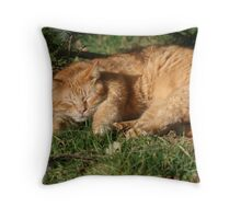 It's all about the cat nap! Throw Pillow