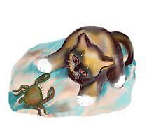 Crab Confrontation with Kitten Photographic Print