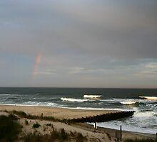 Jersey Shore by Bekka Björke