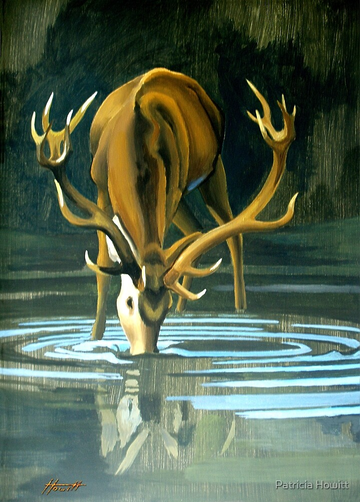 Stag Drinking at the Pool by Patricia Howitt