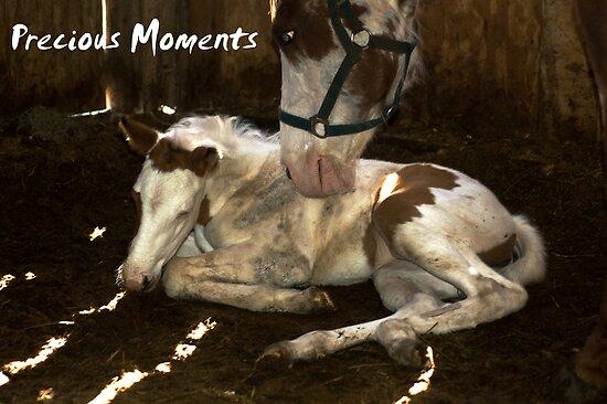 Precious Moments by cherylc1