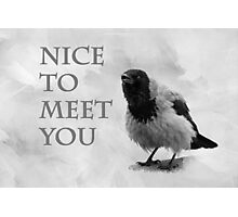 Nice To Meet You Photographic Print