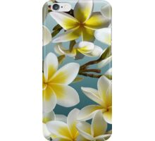 Plumeria on Blue iPhone Case/Skin