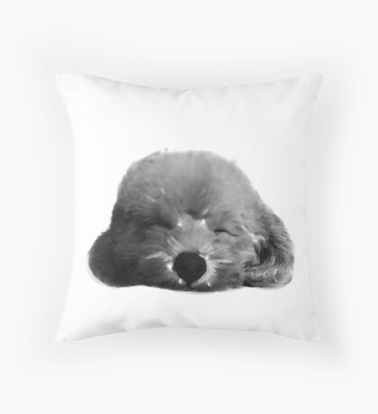 Bibo the sleeping poodle Throw Pillow