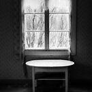 1.4.2015: Spring Morning Silence by Petri Volanen