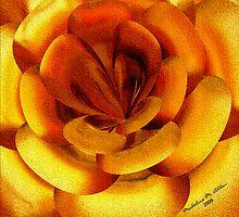 ~ INCENDIA ROSE ~ by Madeline M  Allen