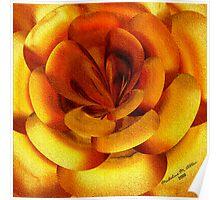 ~ INCENDIA ROSE ~ Poster