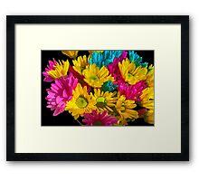 Spring Daisies 2 Framed Print