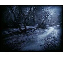 Moonlight Photographic Print