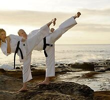 Increase your capital with Martial Arts Business  by nickgm1538