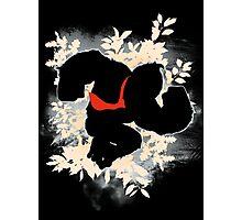 Super Smash Bros. White Donkey Kong Silhouette Photographic Print