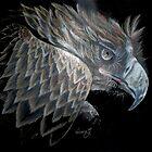 eagle by Diane Giusa