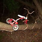 Tricycle tree by Jwood