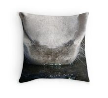 Long Cold Drink Throw Pillow