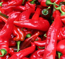 Red Peppers by taiche