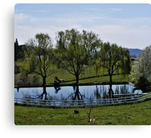 Weeping Willow Pond Canvas Print