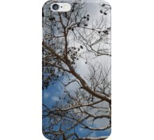 Skeleton of A Pine Tree Against Sky and Clouds iPhone Case/Skin