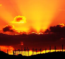 Qld sunset through red clouds by Dave Storey
