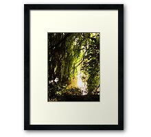 Hanging Loose Framed Print