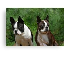 Jack & Amby.. Canvas Print