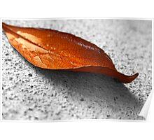 orange leaf Poster