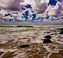 High Tide at Burleigh by RhondaR