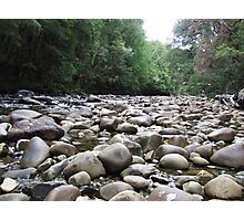 Franklin River Photographic Print