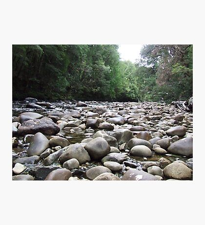 Franklin River Photographic Print