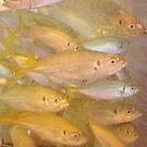 fish by Soxy Fleming