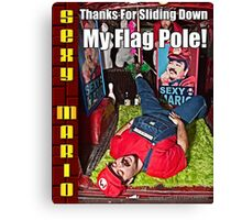 SexyMario MEME - Thanks For Sliding Down My Flag Pole 1 Canvas Print
