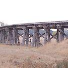 This Old Bridge - Yarra Glen by lettie1957