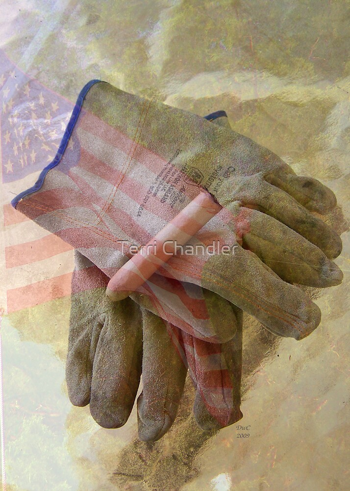 Made In America by Terri Chandler