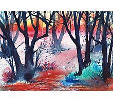 Inktense Trees Photographic Print