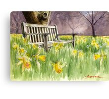 Bench in daffodils  Canvas Print