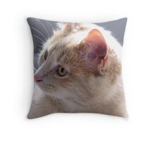 Whiskers and Eyebrows Throw Pillow