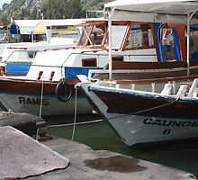 Caunos Riverboats at Dalyan by taiche