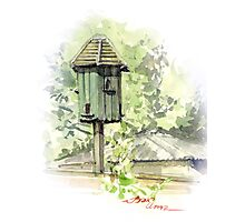 A Bird House  Photographic Print