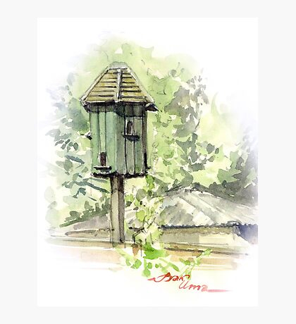 A Bird House  Photographic Print