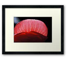 Lip Framed Print