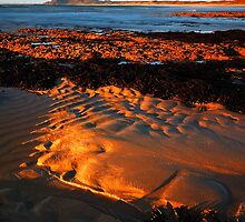 Afternoon Glow by Garth Smith