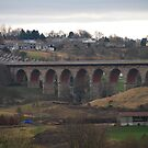 Newton Cap Viaduct by peter reid